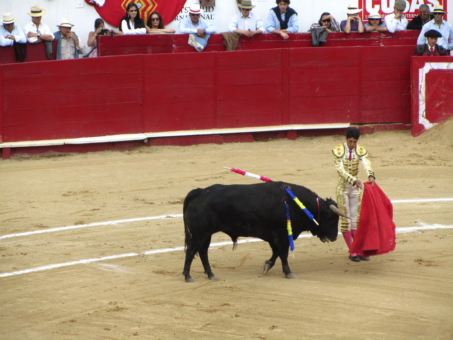 Ecuador-Quito-Bullfight-Coaxing-The-Bull