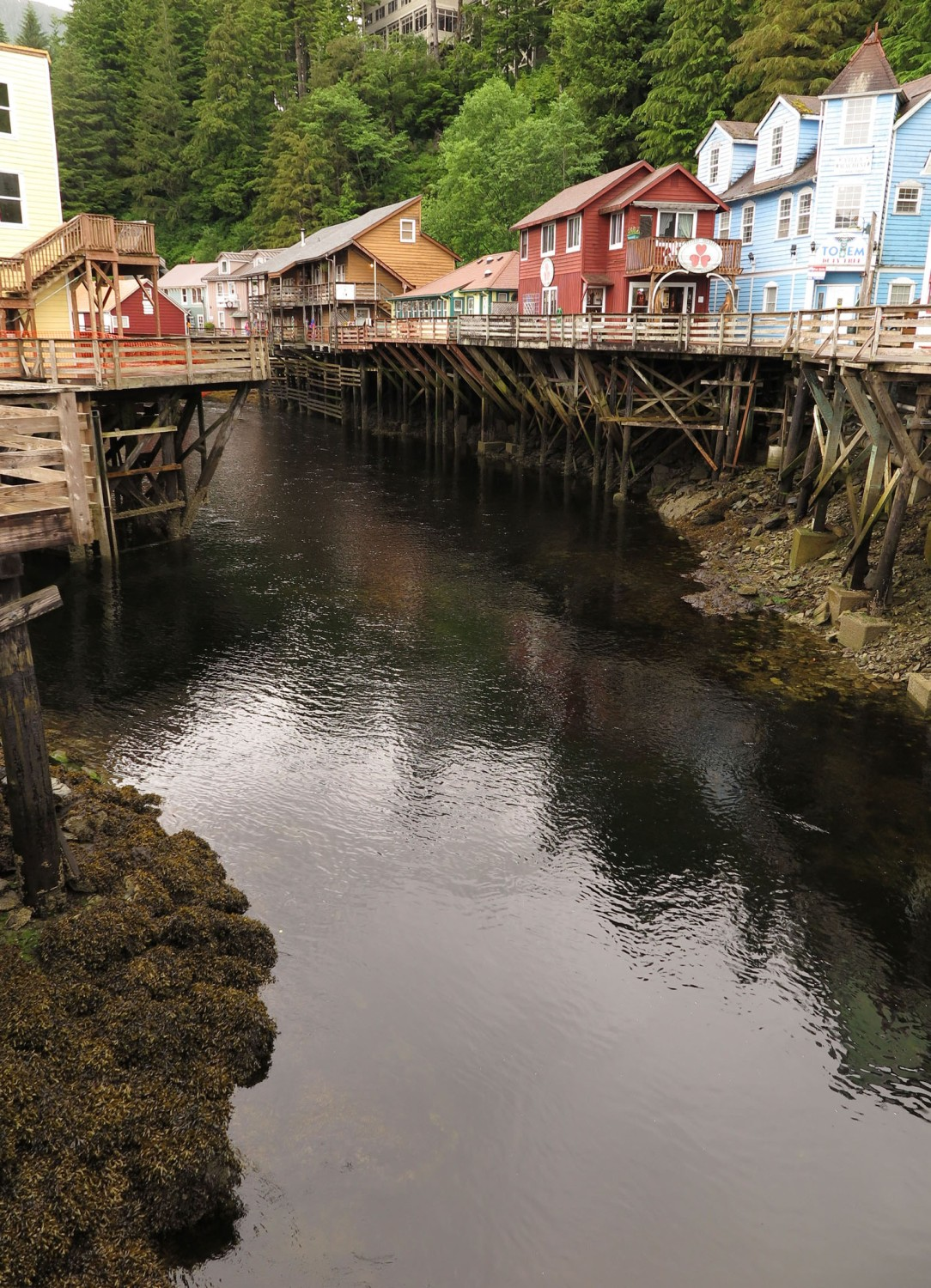 Alaska-Ketchikan-Low-Tide