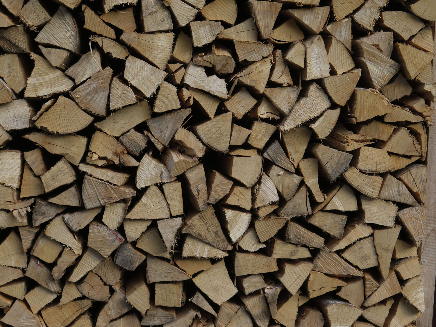 Switzerland-Bernese-Oberland-Murren-Woodpile