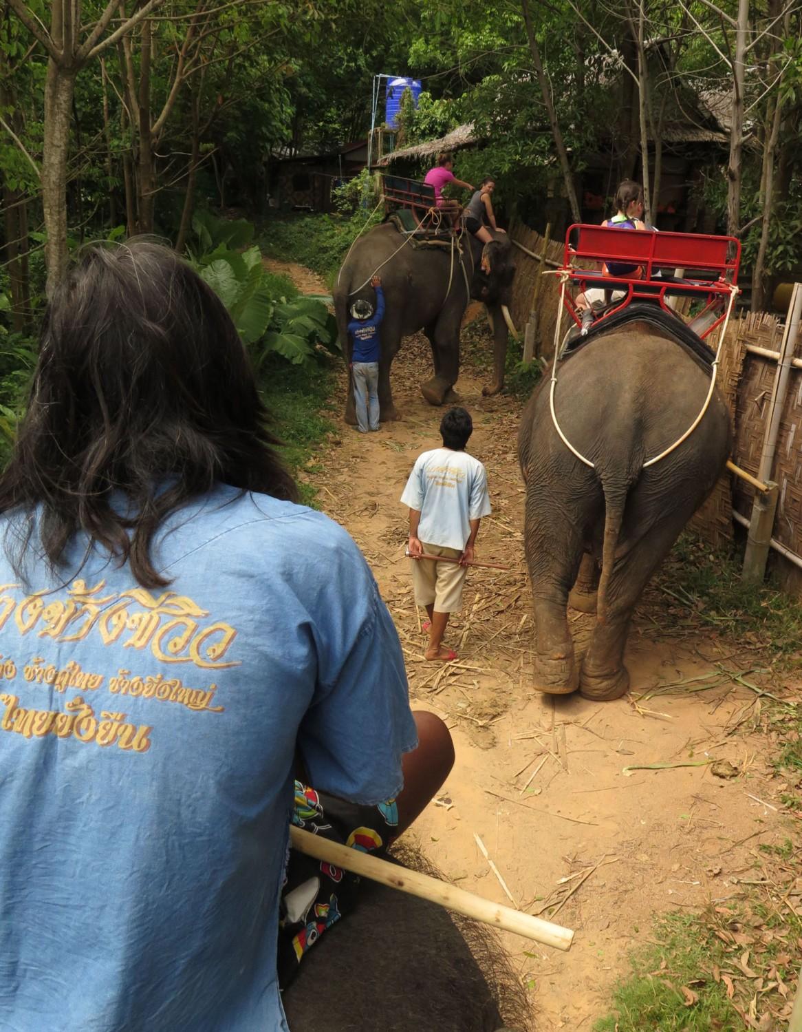 Thailand-Phuket-Elephant-Ride