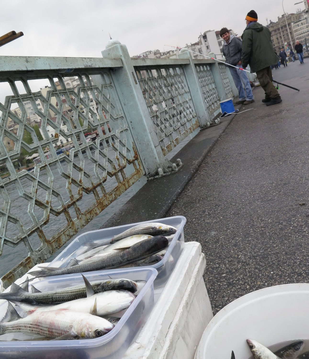 Turkey-Istanbul-Galata-Bridge-Fish