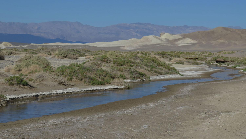 Death-Valley-Salt-Creek