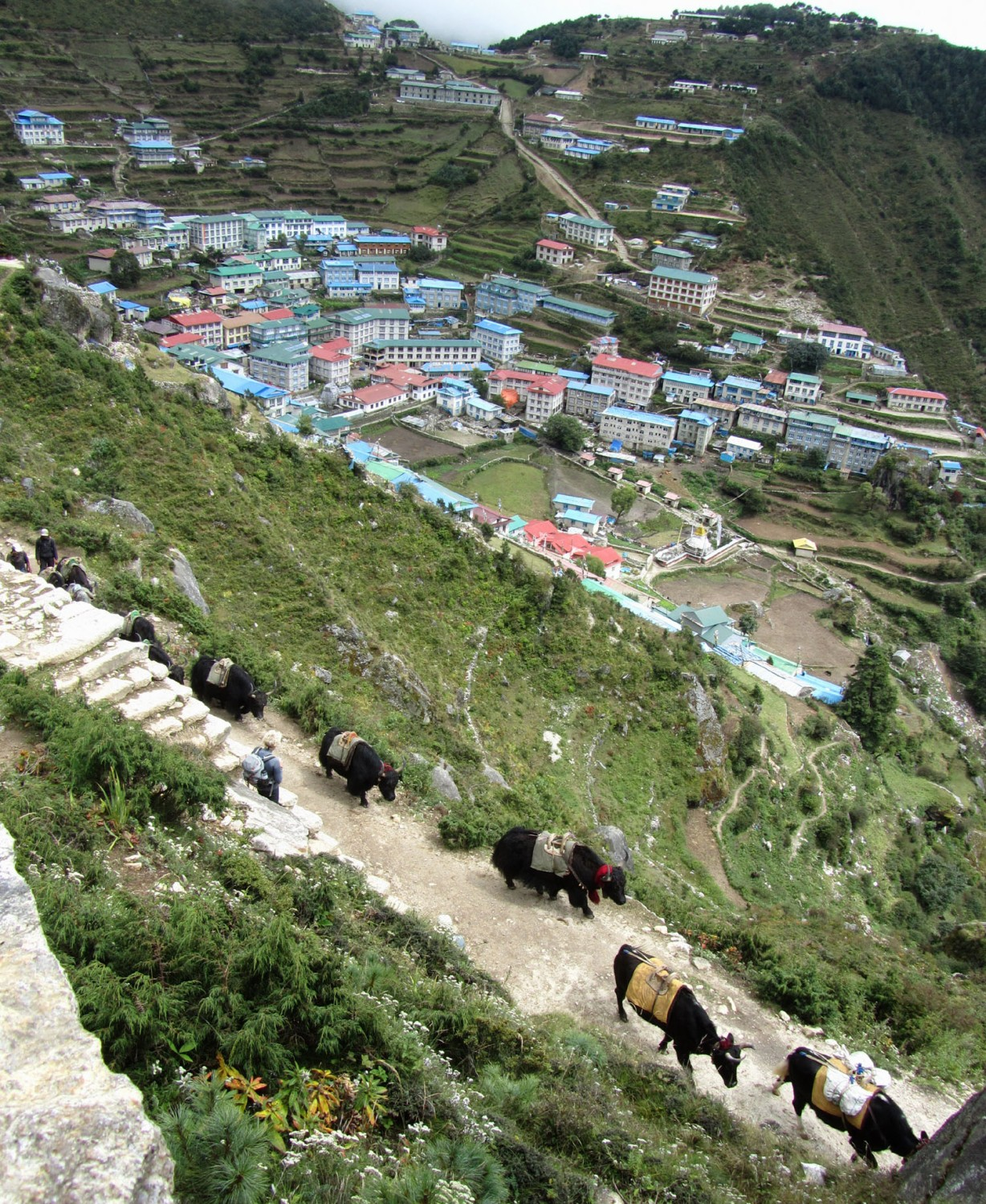 Nepal-Everest-Region-Trek-Day-07-Namche