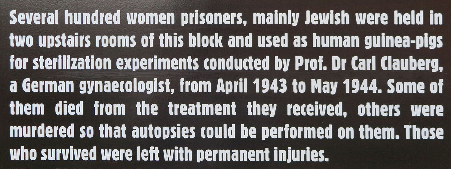 Poland-Auschwitz-Medical-Experiments