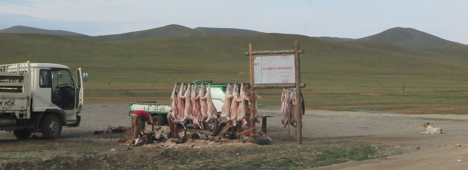 Mongolia-On-The-Road-Butcher