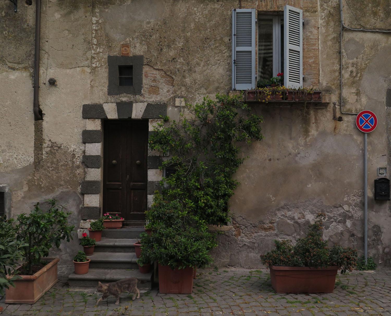 Italy-Orvieto-Street-Scenes-Cat