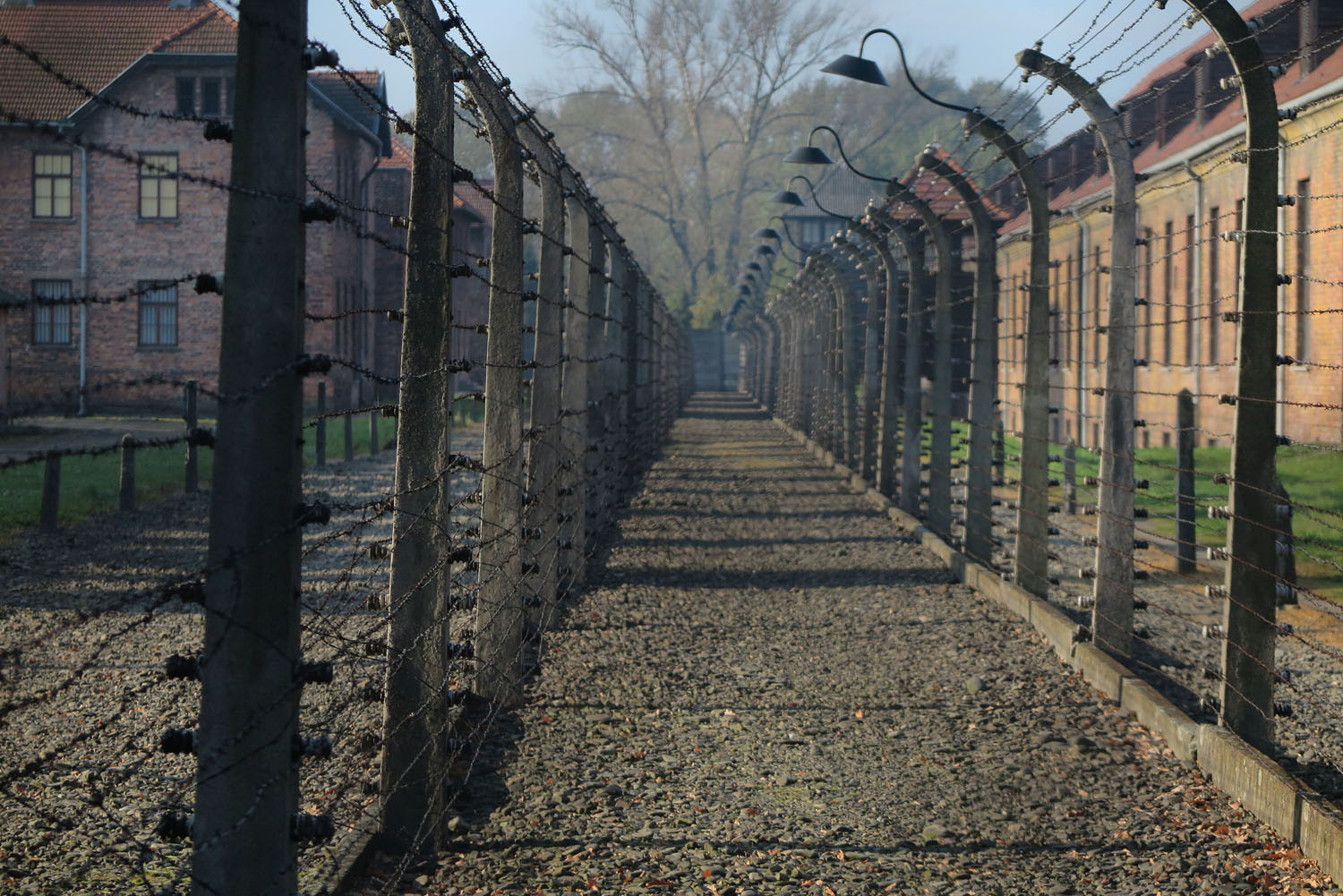 Poland-Auschwitz-Barbed-Wire-Fence