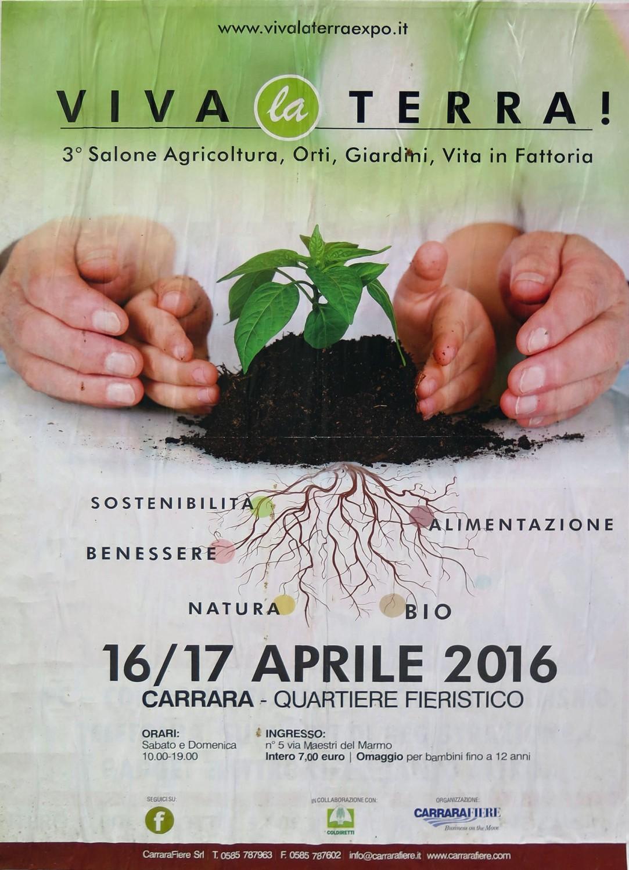 Italy-Pisa-Street-Scenes-Poster