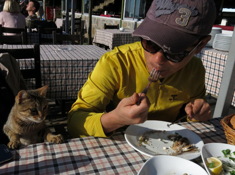 Turkey-Bosphorus-Friends-Yohan-Cat