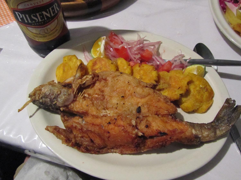 Ecuador-Countryside-Mindo-Food-And-Drink-Trucha