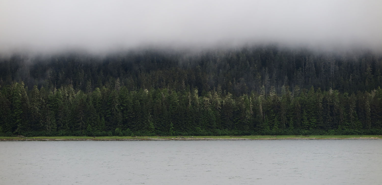 Alaska-State-Ferry-Inside-Passage-Scenery-Trees