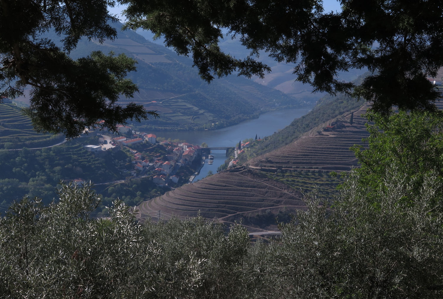 portugal-douro-valley-wine-tour-scenery