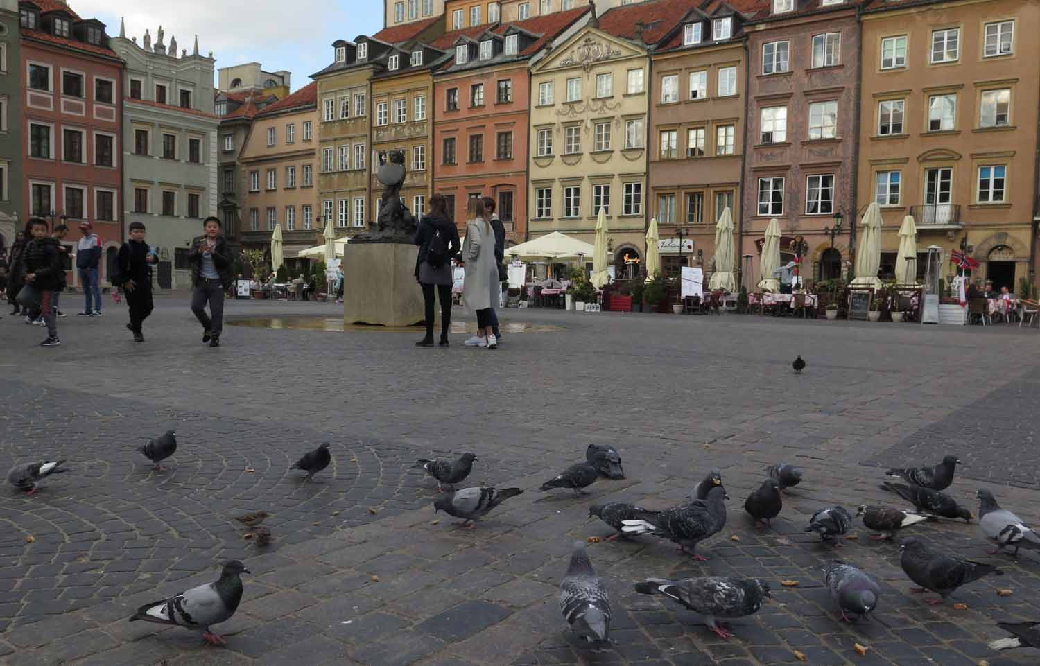 Poland-Warsaw-Old-Town-Square-Pigeons